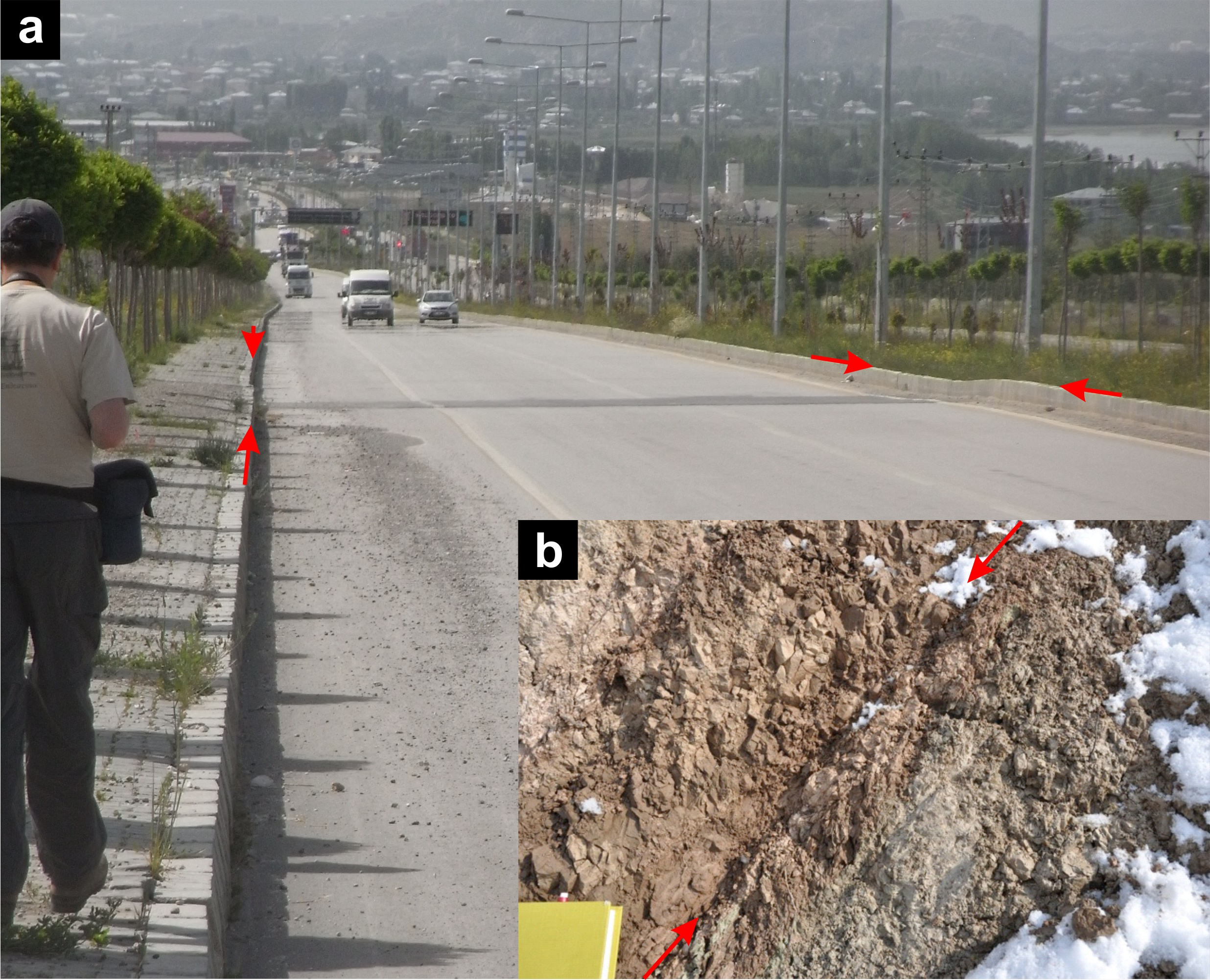 Figure 3:  (a) The slip motion on this fault at the surface is very small for such a large earthquake. The previously straight kerbstone moved a few centimetres to the left and down on the south side by less than 10 cm (red arrows). The small movements of the fault at the surface indicate most of the slip in the earthquake remained deeply buried. Photo Credit: John Elliott, June 2013. (b) Image of the sediments in the road cutting where the fault crosses the road shown in (a). This shows a line (marked by red arrows) cutting though these soft sediments that has been created by past motion on this fault. This fault gouge dips to the north by about 50 degrees, matching the dip of the depper fault which slipped in the 2011 earthquake and that was found from modelling the InSAR deformation data shown in figure 1. Photo Credit: Kate Scharer, November 2011.